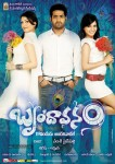 Brindavanam Movie Wallpapers - 14 of 15