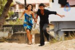 Dopidi Movie Stills - Trisha, Vijay - 7 of 24