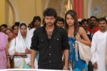 Dopidi Movie Stills - Trisha, Vijay - 21 of 24