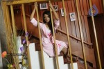 Ivan Chatriyan Tamil Movie Spicy Gallery - 2 of 29