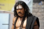 Nagarjuna Stills in Jagadguru Adi Shankara Movie - 4 of 20