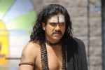 Nagarjuna Stills in Jagadguru Adi Shankara Movie - 11 of 20