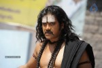 Nagarjuna Stills in Jagadguru Adi Shankara Movie - 17 of 20