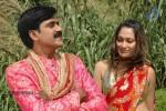 narasimharaju-movie-stills