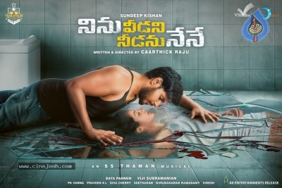 Ninu Veedani Needanu Nene Movie First Look Poster And Still - 2 of 2