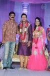 celebs-at-raja-wedding-reception