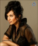 Flora Saini Spicy Stills :27-12-2011