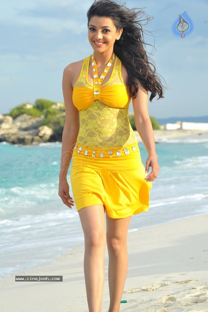 Kajal Agarwal New Hot Stills  - 3 / 90 photos