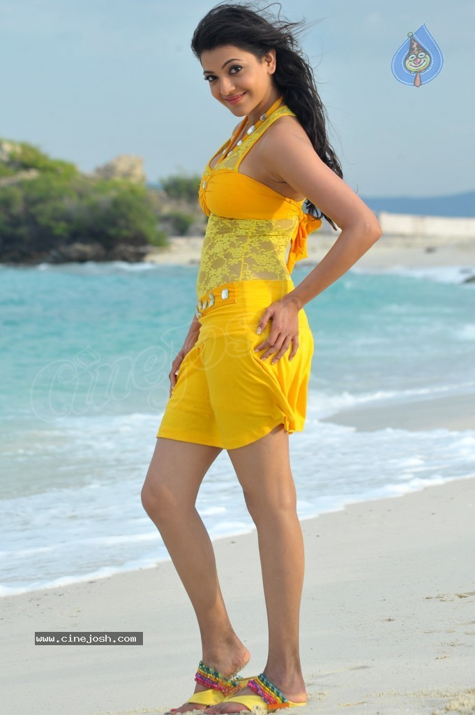 Kajal Agarwal New Hot Stills  - 6 / 90 photos