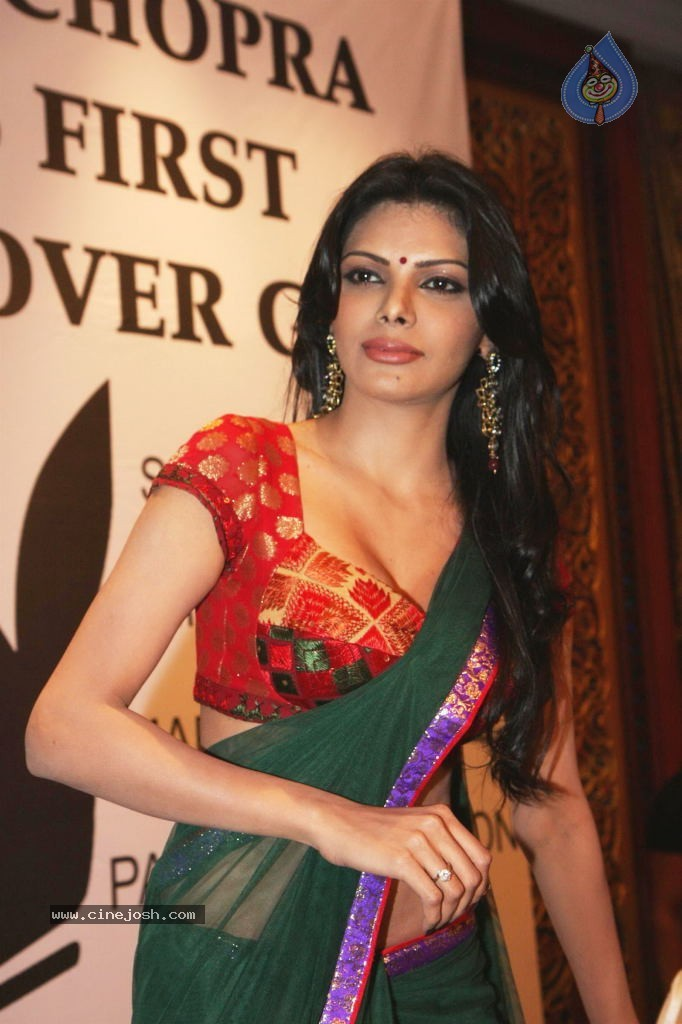 sherlyn_chopra_hot_stills_2407120615_019.jpg