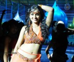 Anushka Spicy Stills - 5 of 33