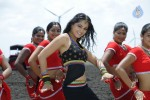 Anushka Spicy Stills - 19 of 33