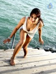 Jagan Movie Hot Stills - 12 of 39