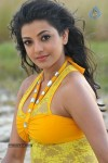 Kajal Agarwal New Hot Stills  - 10 of 90