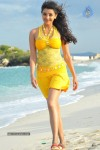 Kajal Agarwal New Hot Stills  - 12 of 90