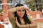 neelam-upadhyay-hot-photos