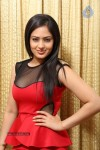 Nikesha Patel Hot Gallery - 20 of 83