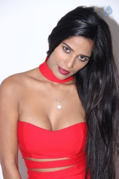 Poonam Pandey Hot Pics - 4 of 31