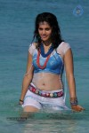 Tapsee Hot Photos - 14 of 34