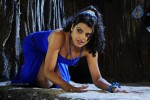 Tashu Kaushik New Spicy Gallery - 5 of 51
