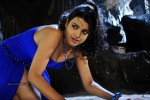 Tashu Kaushik New Spicy Gallery - 11 of 51