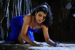 Tashu Kaushik New Spicy Gallery - 13 of 51