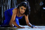 Tashu Kaushik New Spicy Gallery - 15 of 51
