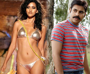 Pawan's Belly reply for Mahesh Butt