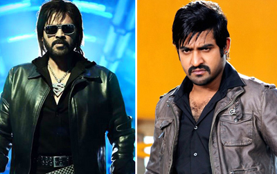 'Baadshah','Shadow''GV' n Bunny; Who's Stylish?