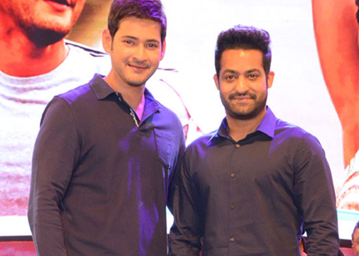 Mahesh Babu and NTR Fans War Intensifies