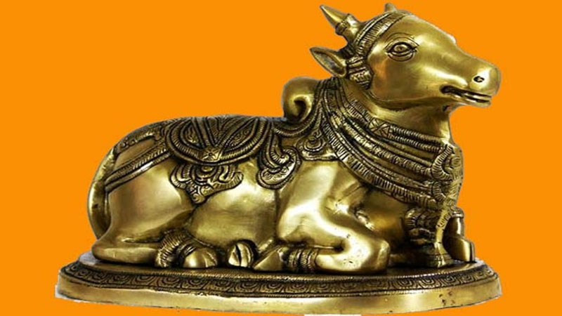 Nandi Awards Received Hilarious Response!