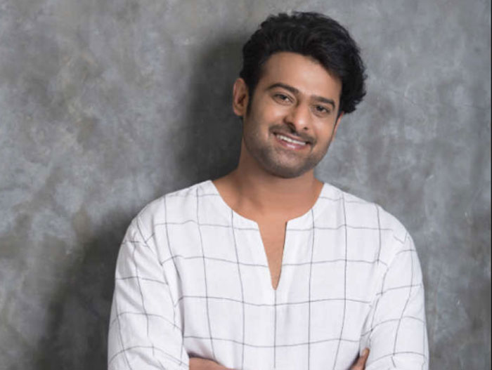 Young Rebel Star Prabhas