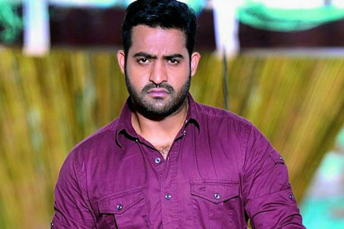 Young Tiger NTR