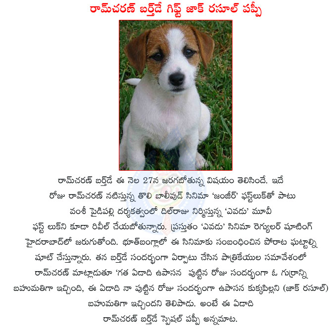 Pukulo Sulli Telugu Stories