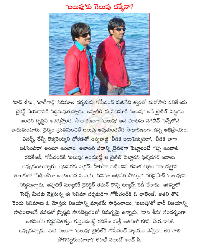 raviteja,tollywood actor raviteja,gopichand malineni,tollywood director gopichand malineni,raviteja with gopichand,balupu,balupu movie,telugu movie balupu,ss thaman,music director ss thaman,don seenu movie,telugu movie bodyguard