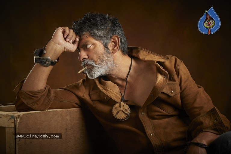 Jagapathi Babu New Stills - 10 / 25 photos