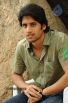 Naga Chaitanya Gallery - 4 of 32