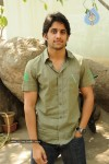Naga Chaitanya Gallery - 6 of 32
