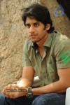 Naga Chaitanya Gallery - 7 of 32