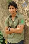 Naga Chaitanya Gallery - 12 of 32