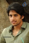 Naga Chaitanya Gallery - 13 of 32