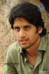 Naga Chaitanya Gallery - 17 of 32