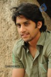 Naga Chaitanya Gallery - 18 of 32