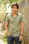 Naga Chaitanya Gallery - 19 of 32