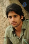 Naga Chaitanya Gallery - 20 of 32