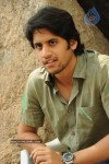 Naga Chaitanya Gallery - 21 of 32