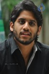 Naga Chaitanya Photos - 3 of 44