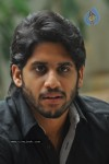 Naga Chaitanya Photos - 4 of 44