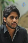 Naga Chaitanya Photos - 5 of 44