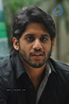 Naga Chaitanya Photos - 8 of 44